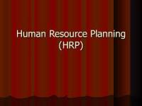 Activities in Human Resource Planning